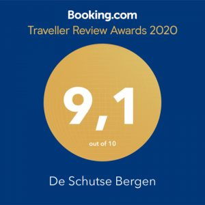 Awardwinner 2020 Booking.com